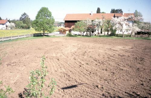 Entstehung 1 Schaugarten Seeshaupt